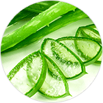 Aloe leaf juice